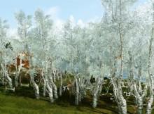 Archeage деревья